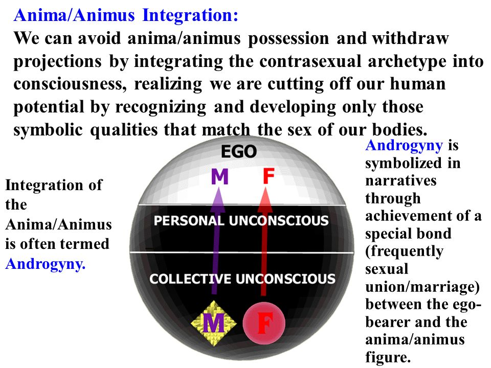 Anima/Animus Integration: We can avoid anima/animus possession and withdraw projections by integrating the contrasexual archetype into consciousness, realizing we are cutting off our human potential by recognizing and developing only those symbolic qualities that match the sex of our bodies.