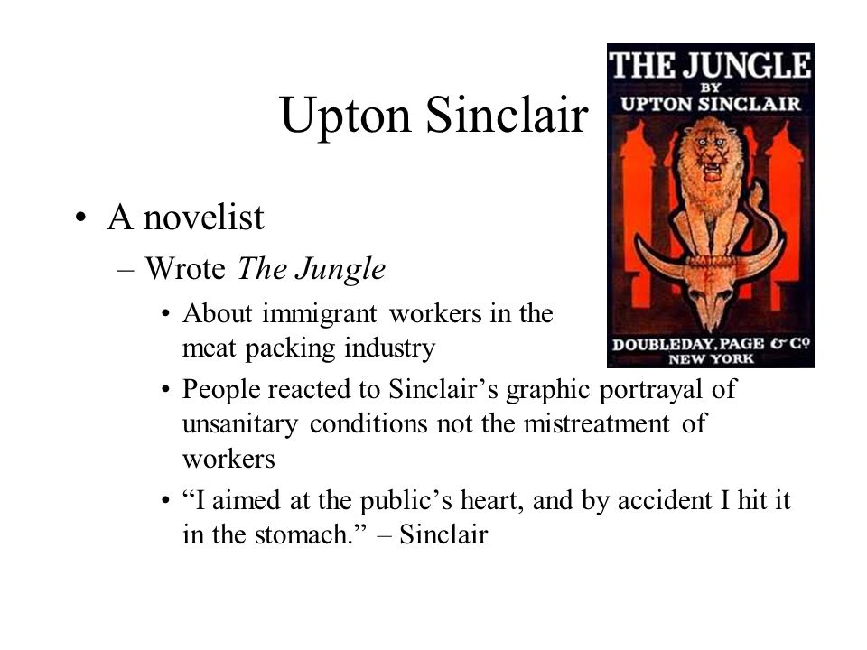 Upton Sinclair A novelist Wrote The Jungle