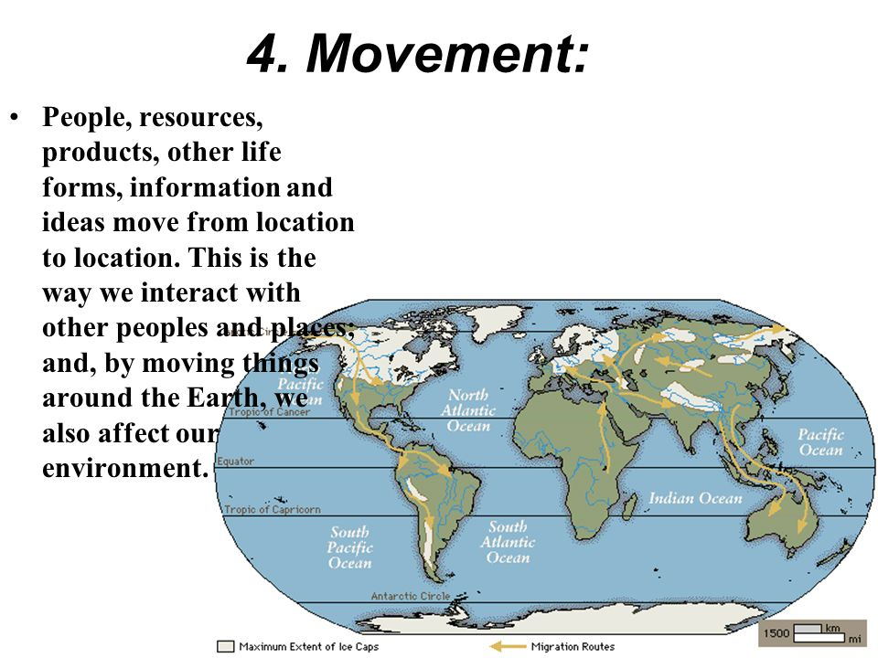 4. Movement:
