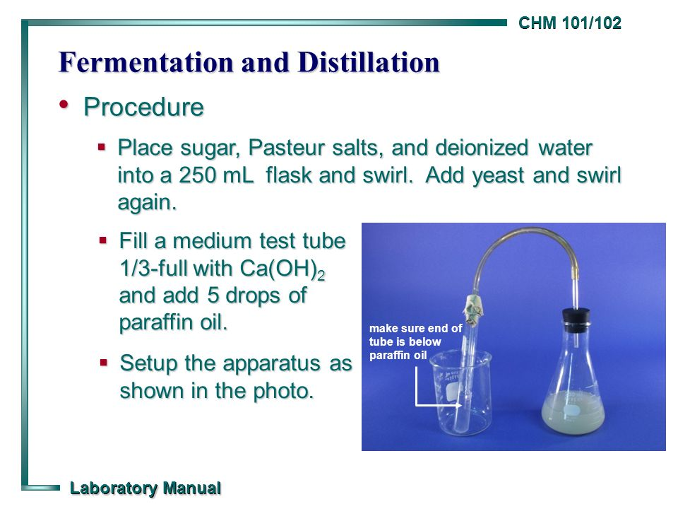 fermentation and distillation