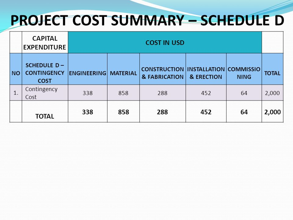 PROJECT COST SUMMARY – SCHEDULE D