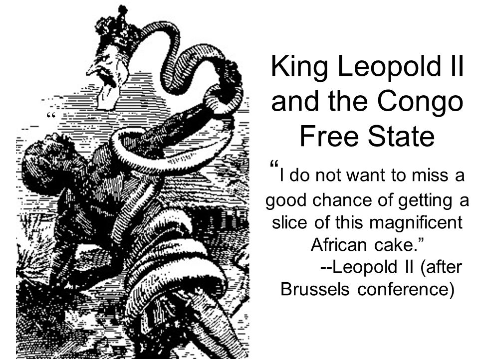 King Leopold II and the Congo Free State I do not want to miss a good chance of getting a slice of this magnificent African cake. --Leopold II (after Brussels conference)