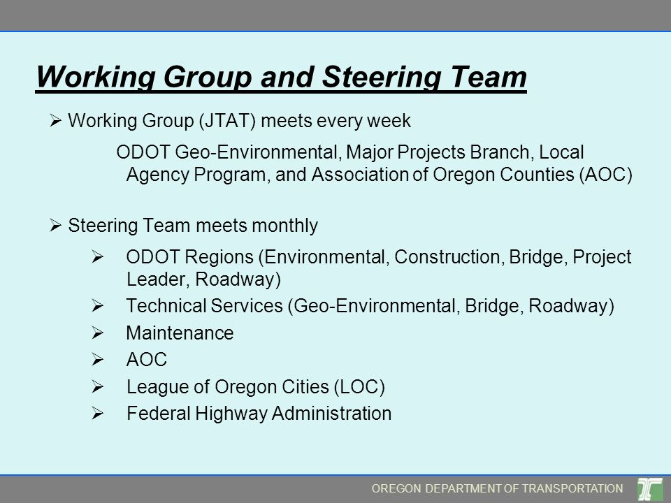 Working Group and Steering Team
