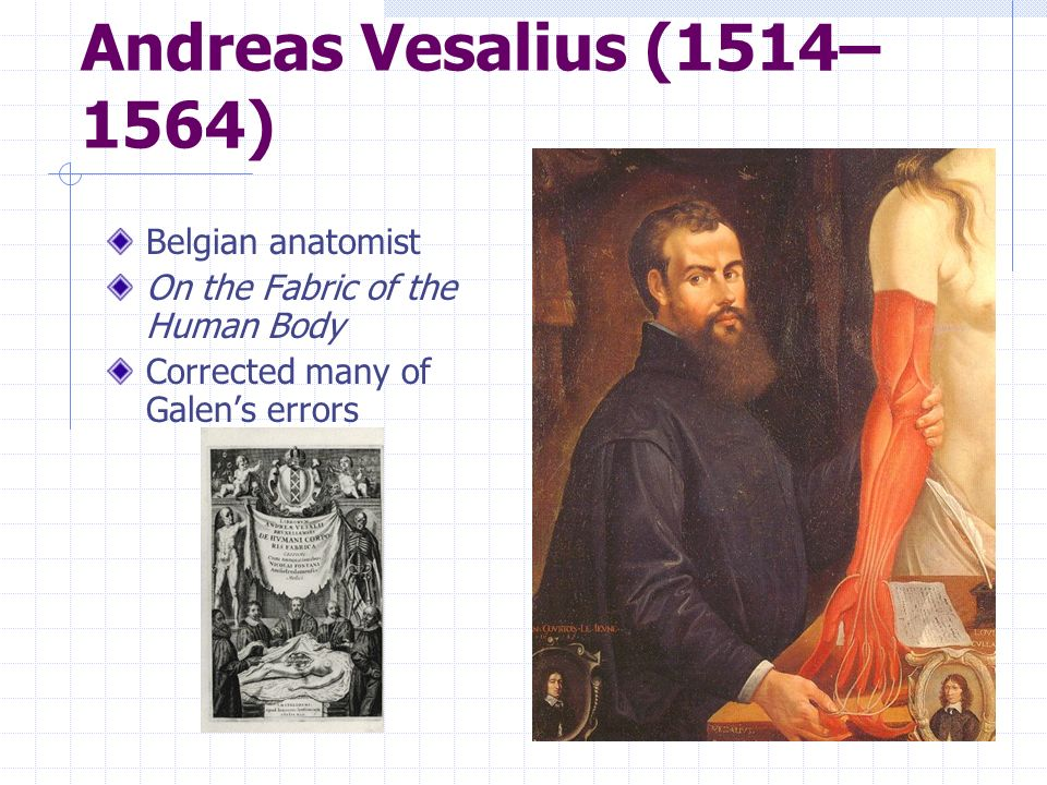 Andreas Vesalius (1514–1564) Belgian anatomist