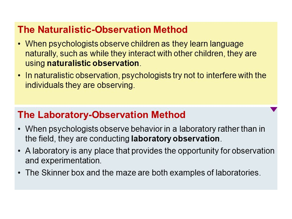 psychology naturalistic observation essay Naturalistic observation is a research method often used in psychology and other social sciences learn how it works and explore examples.