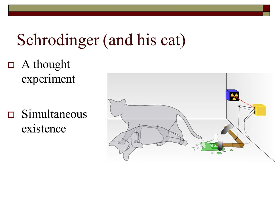 Schrodinger (and his cat)