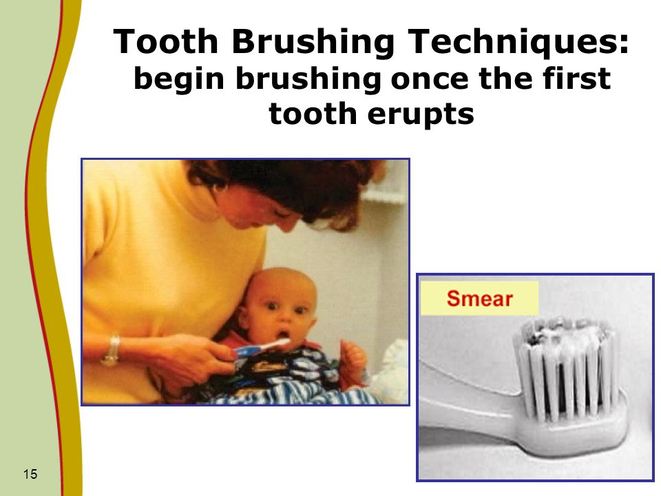 Tooth Brushing Techniques: begin brushing once the first tooth erupts