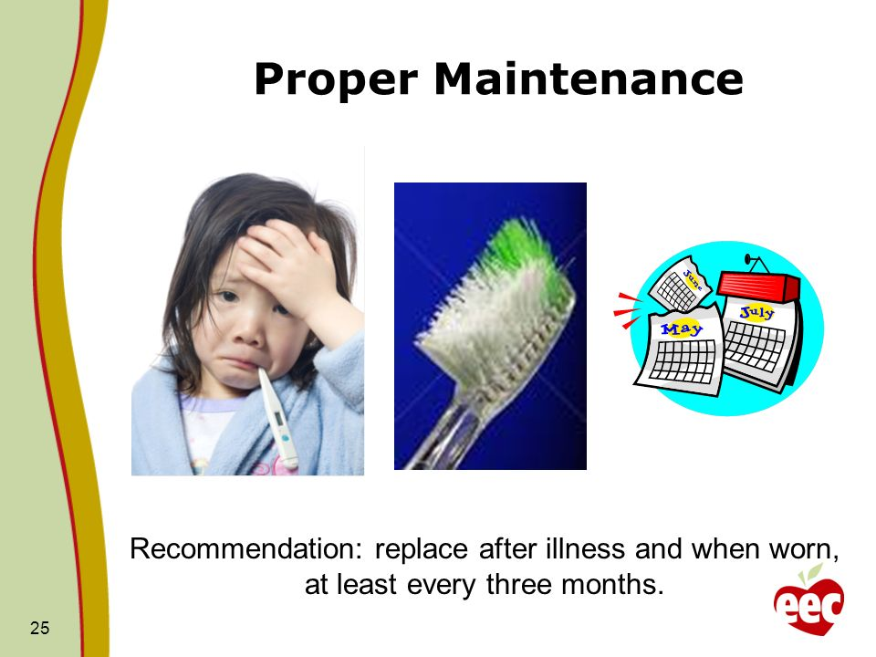 Proper Maintenance Toothbrushes should be replaced every 3 or 4 months, or sooner if the bristles appear worn and/or a child experiences illness.