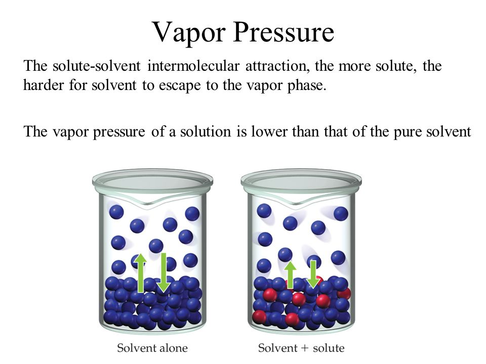 Vapor Pressure The solute-solvent intermolecular attraction, the more solute, the harder for solvent to escape to the vapor phase.