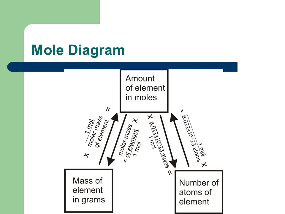 Mole Diagram