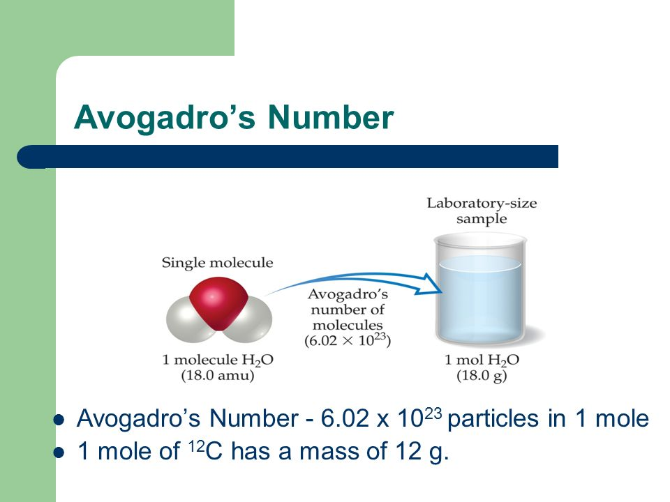 Avogadro's Number Avogadro's Number - 6.02 x 1023 particles in 1 mole