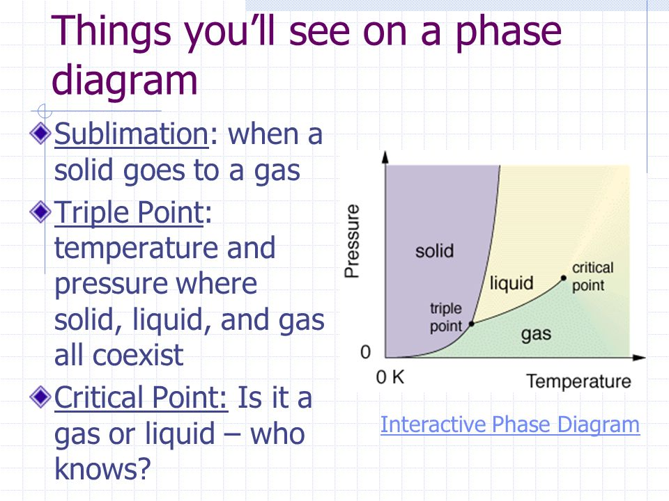 Things you'll see on a phase diagram