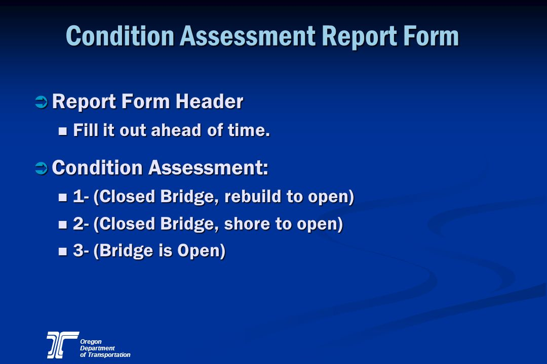 Condition Assessment Report Form