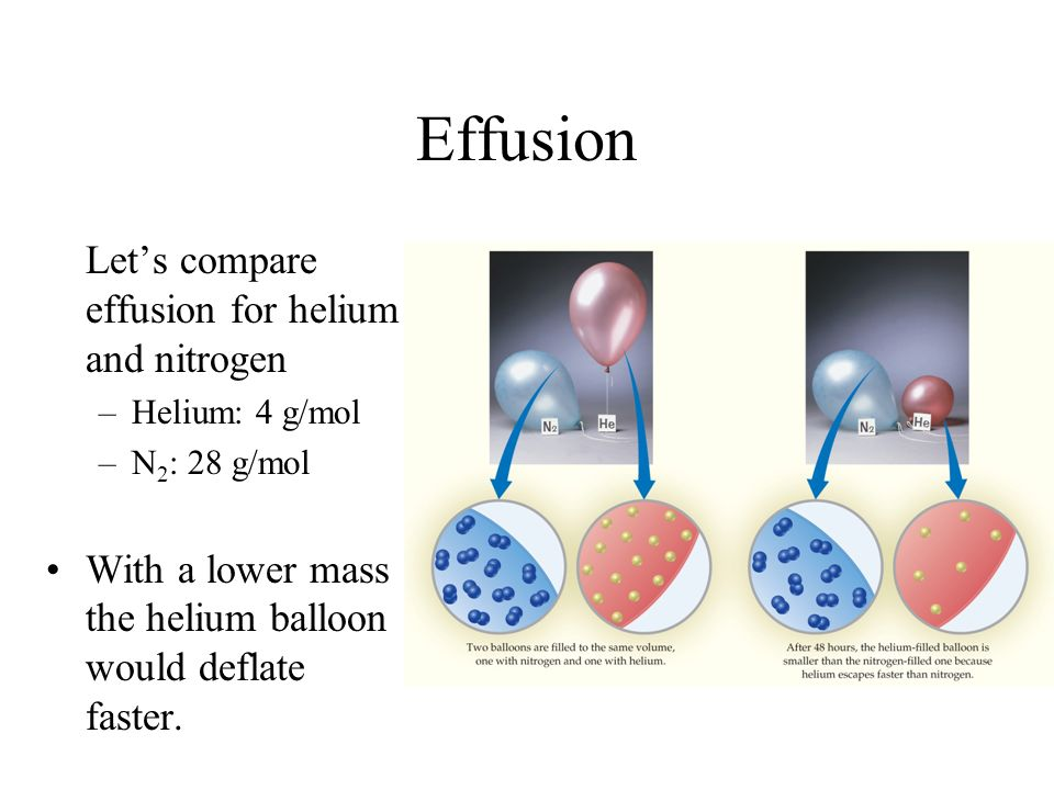 Effusion Let's compare effusion for helium and nitrogen