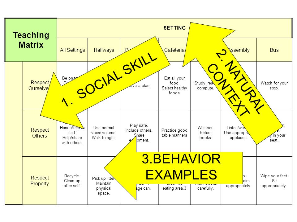 2. NATURAL 1. SOCIAL SKILL CONTEXT 3.BEHAVIOR EXAMPLES Teaching Matrix