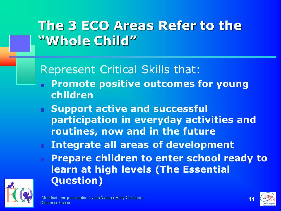 The 3 ECO Areas Refer to the Whole Child