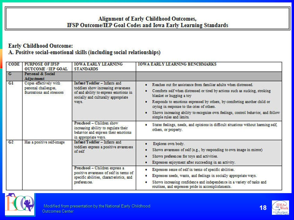 Modified from presentation by the National Early Childhood Outcomes Center