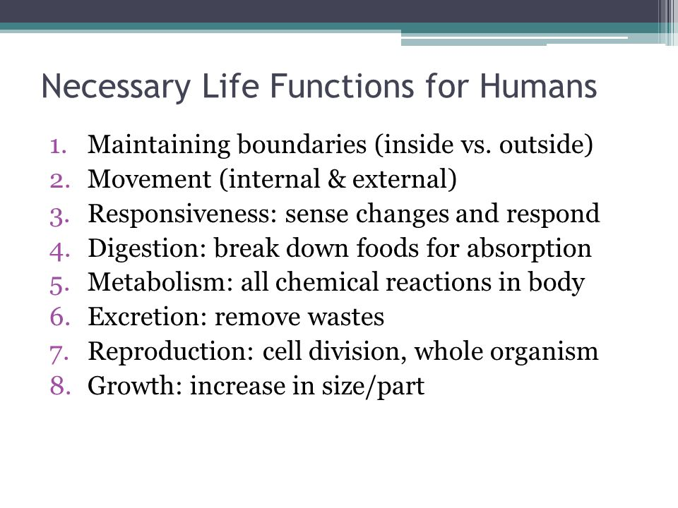 Necessary Life Functions for Humans