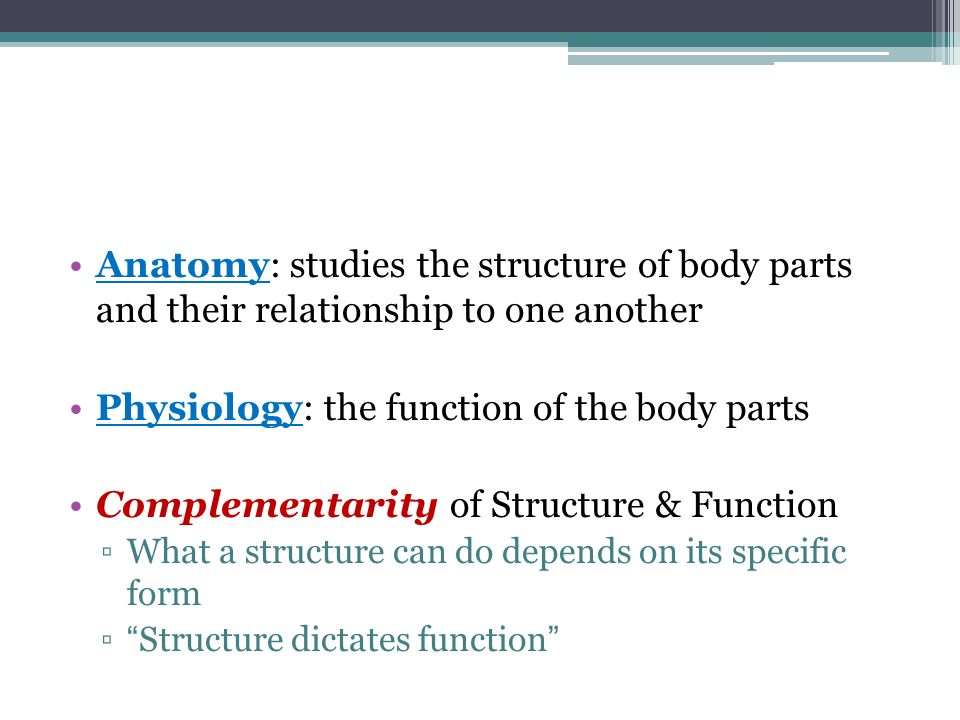 Physiology: the function of the body parts