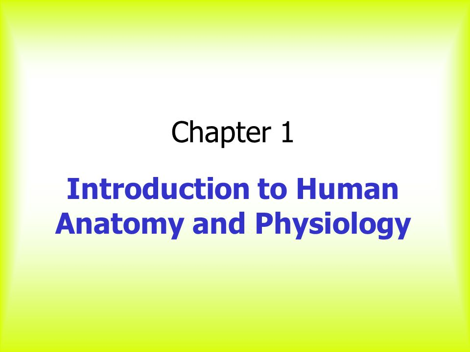 intro to anatomy Discover this essential guide to understanding the remarkable anatomy and  physiology of the human body, presented by a trusted surgeon and professor of.