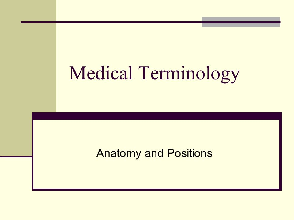 Medical Terminology Anatomy and Positions. - ppt video online download