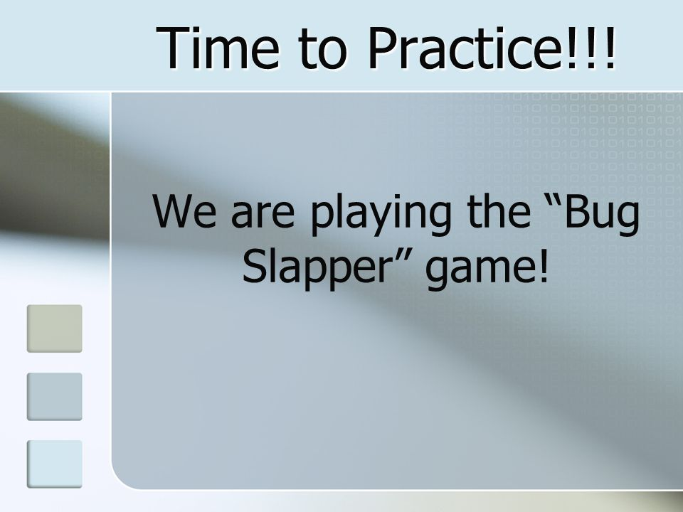 We are playing the Bug Slapper game!