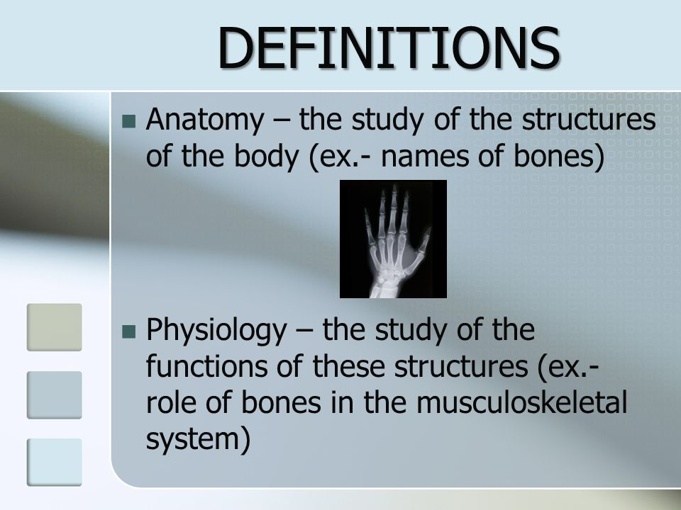 DEFINITIONS Anatomy – the study of the structures of the body (ex.- names of bones)