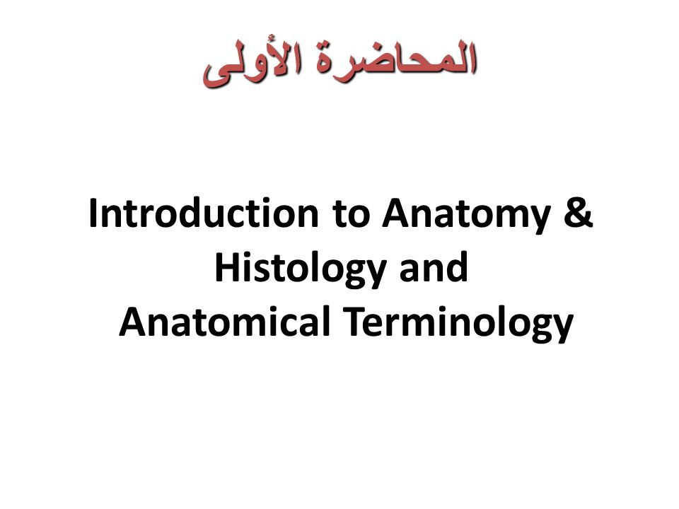 Introduction to Anatomy & Histology and Anatomical Terminology