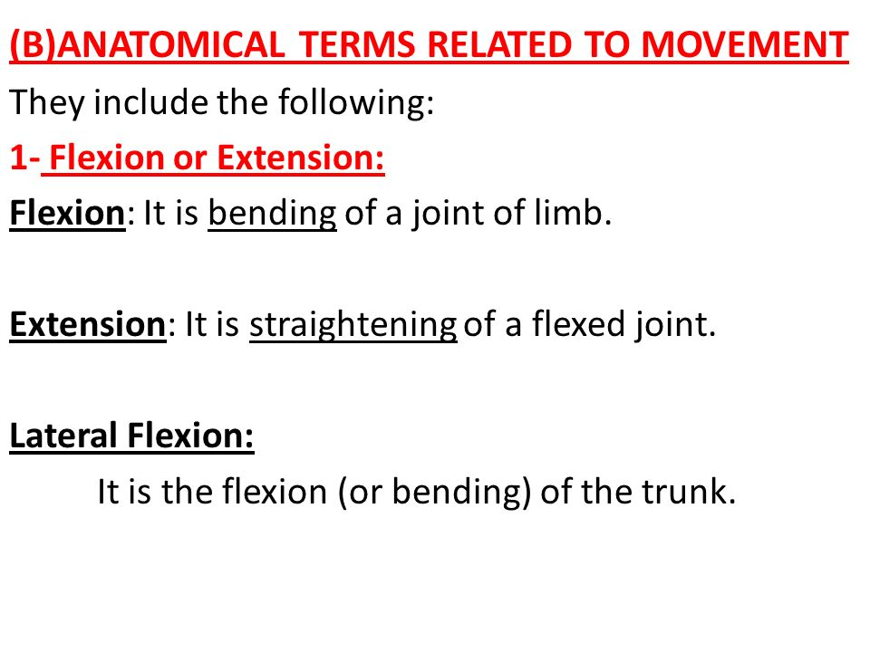 (B)ANATOMICAL TERMS RELATED TO MOVEMENT