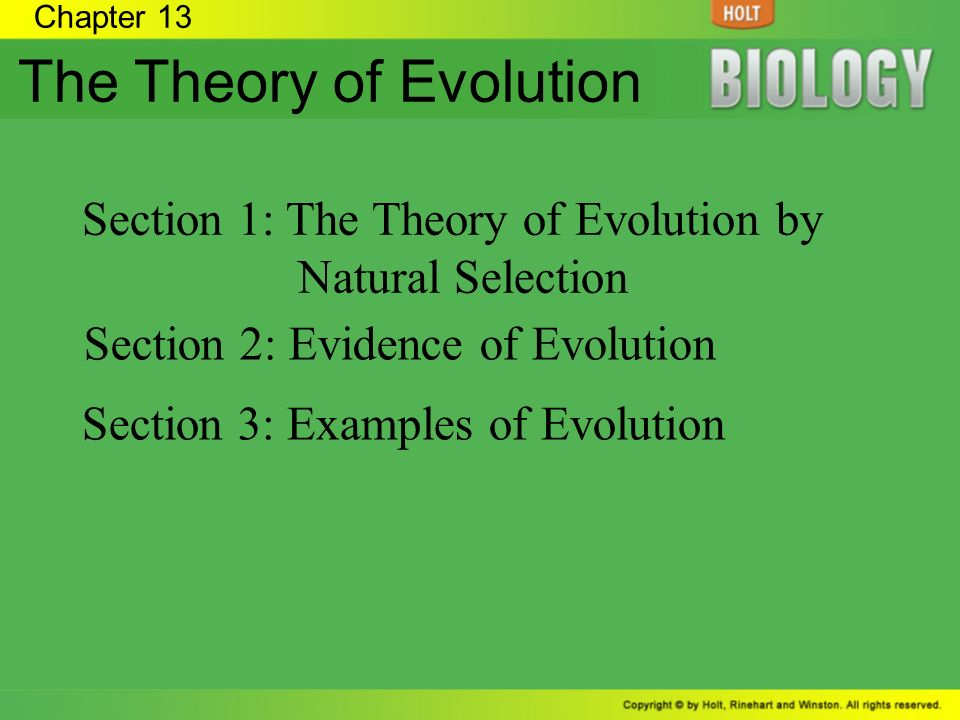 the evolution theory Charles darwin's ideas had a profound impact on the understanding of human  life carolyn burdett looks at the way he developed his theory of evolution, and.