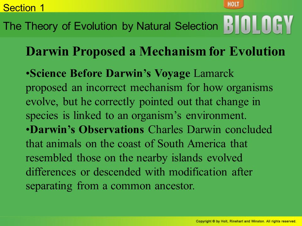 an introduction to charles darwins theory of evolution Darwin's explanation for this great unfolding of life through time—the theory of evolution by natural selection—transformed our understanding of the living world, much as the ideas of galileo, newton, and einstein revolutionized our understanding of the physical universe.