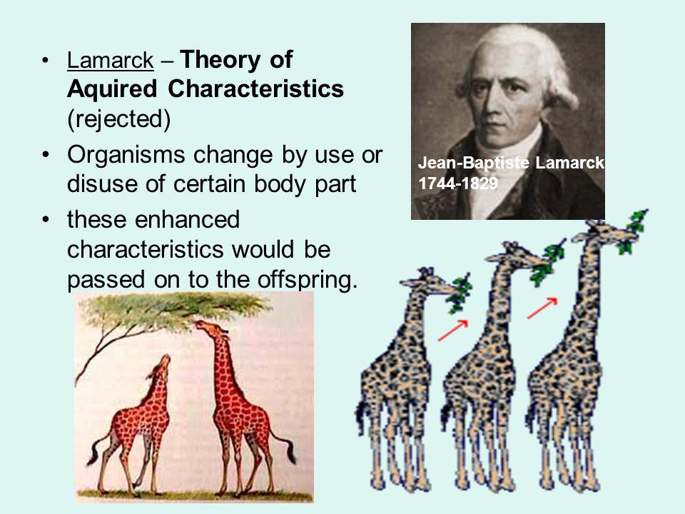 theories of evolution assignmentcharles darwin was