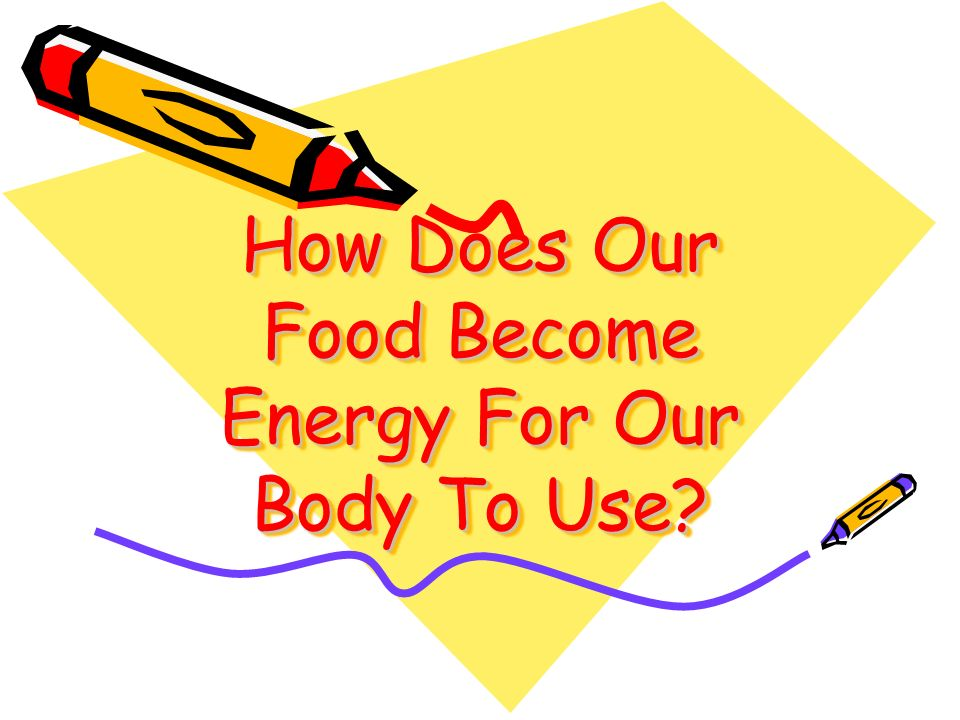 How Does Our Food Become Energy For Our Body To Use