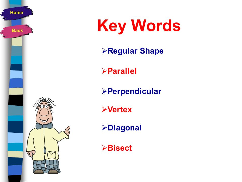 Key Words Regular Shape Parallel Perpendicular Vertex Diagonal Bisect