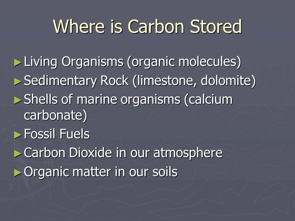 Where is Carbon Stored Living Organisms (organic molecules)