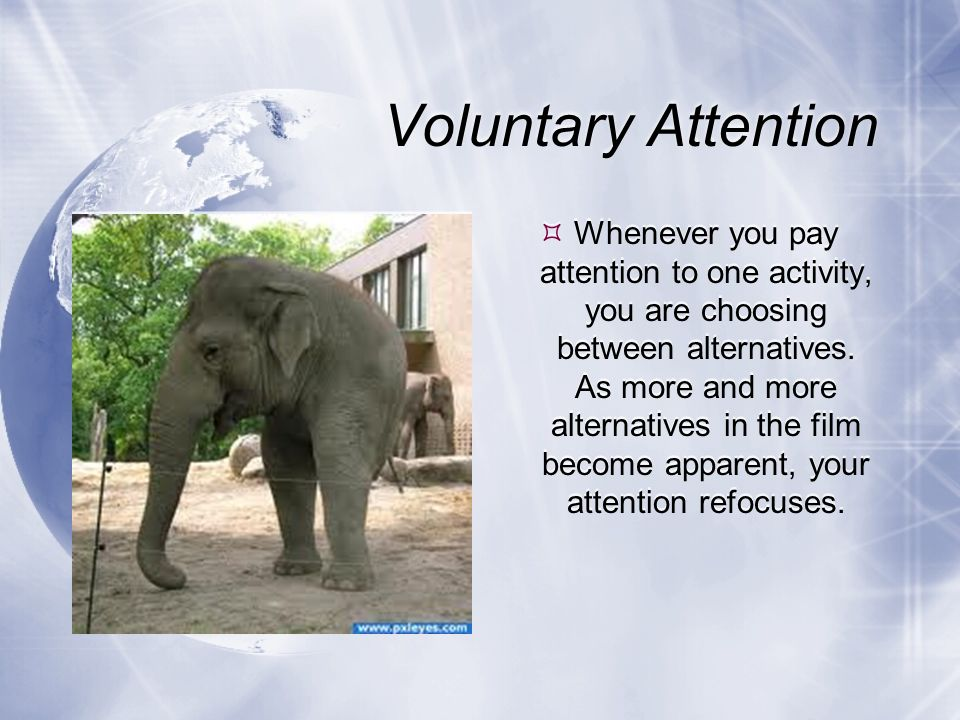 Voluntary Attention