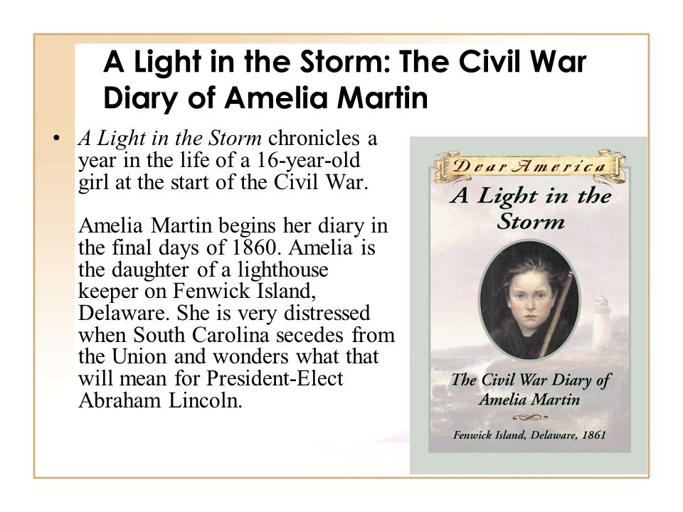 A Light in the Storm: The Civil War Diary of Amelia Martin