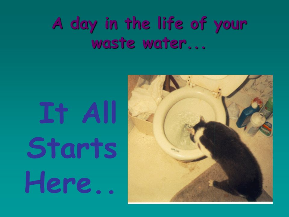 A day in the life of your waste water...
