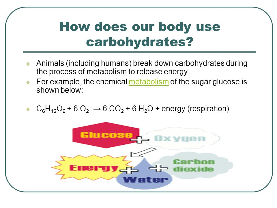 How does our body use carbohydrates