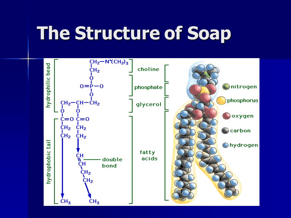 The Structure of Soap