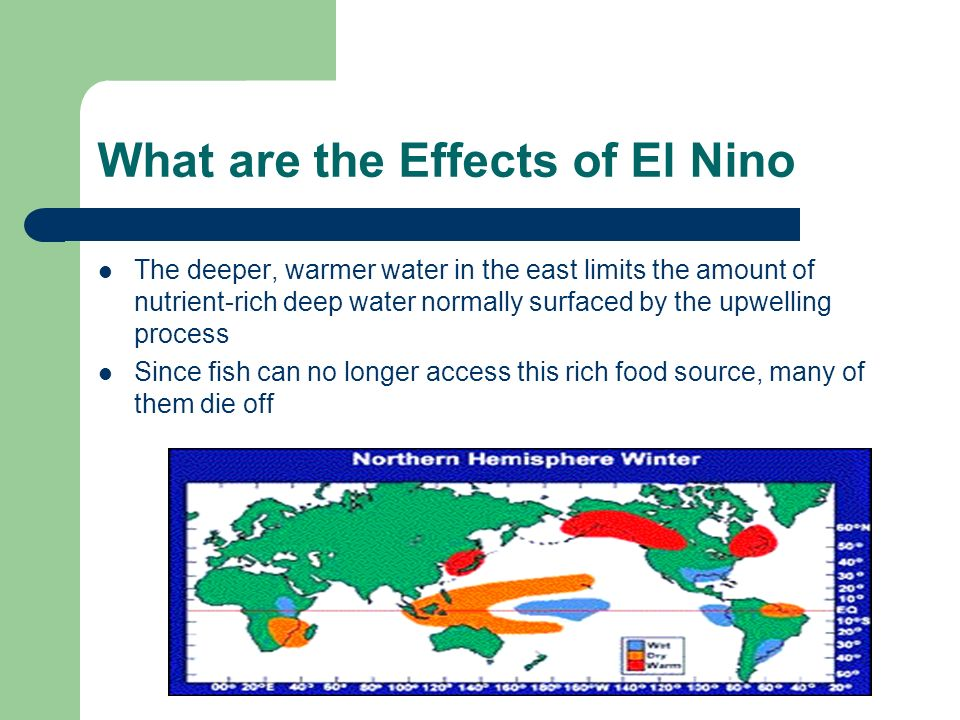 What are the Effects of El Nino