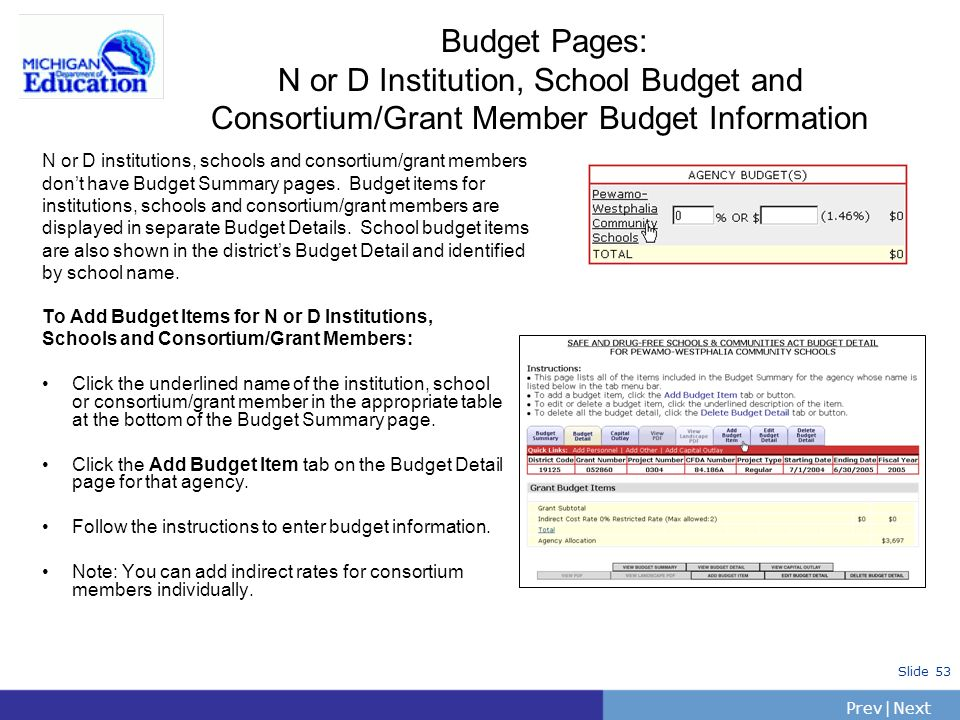 Budget Pages: N or D Institution, School Budget and Consortium/Grant Member Budget Information