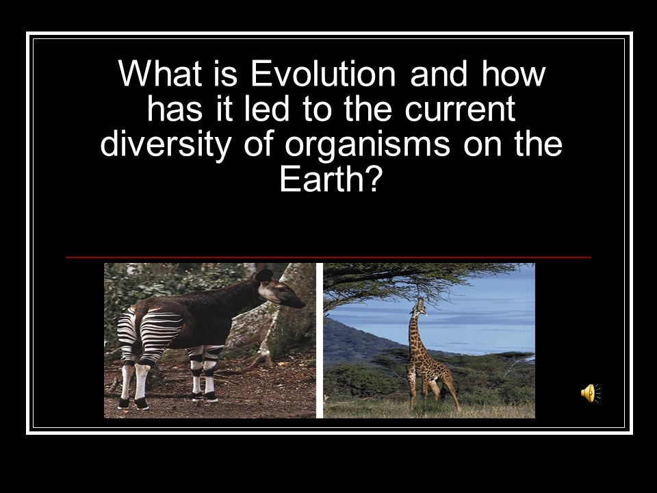 What is Evolution and how has it led to the current diversity of organisms on the Earth