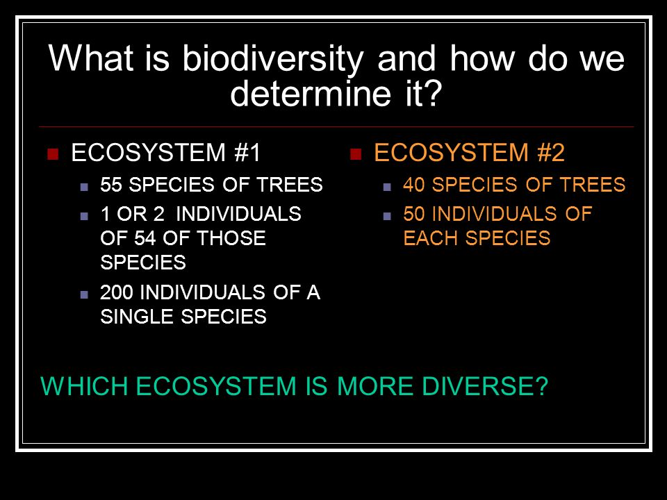 What is biodiversity and how do we determine it