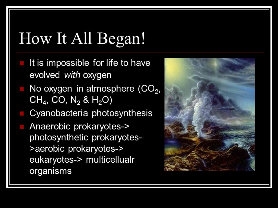 How It All Began! It is impossible for life to have evolved with oxygen. No oxygen in atmosphere (CO2, CH4, CO, N2 & H2O)