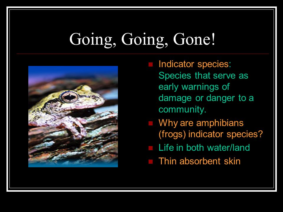 Going, Going, Gone! Indicator species: Species that serve as early warnings of damage or danger to a community.