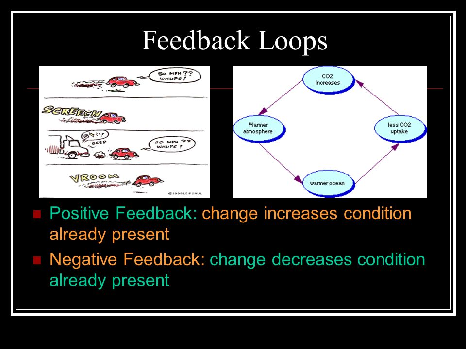 Feedback Loops Positive Feedback: change increases condition already present.
