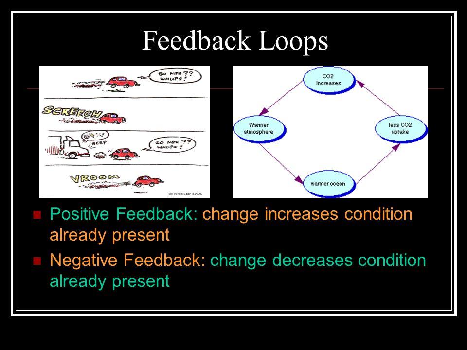 Feedback Loops Positive Feedback: change increases condition already present.