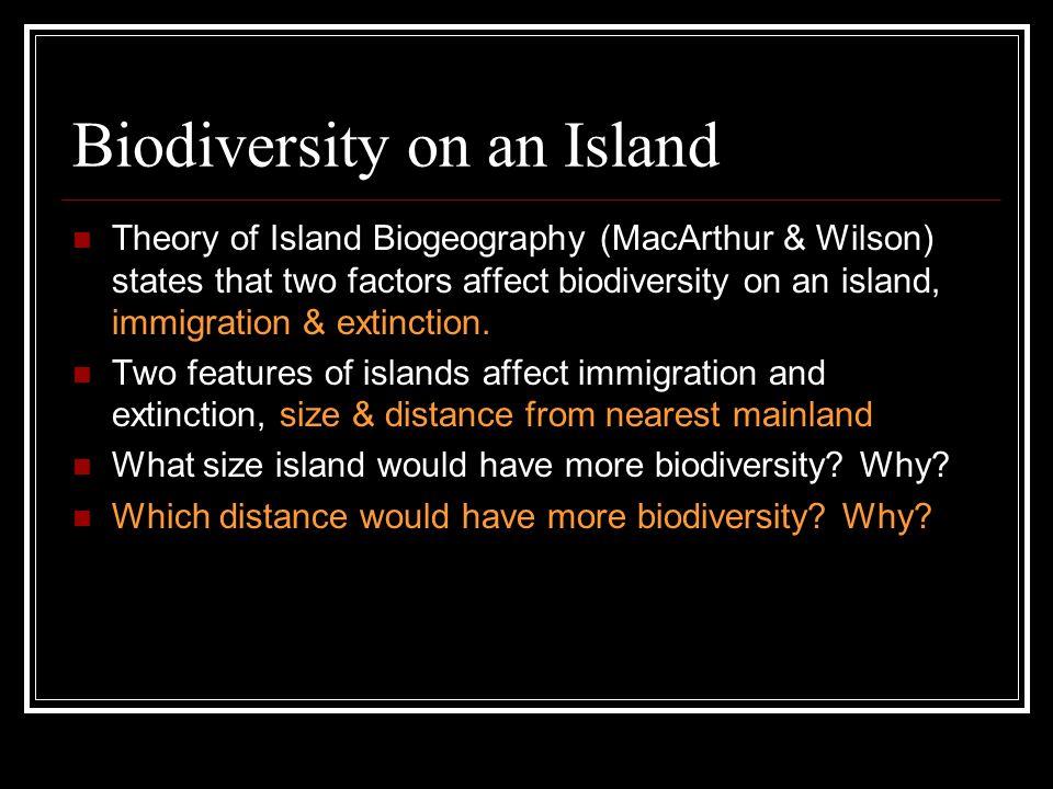 Biodiversity on an Island