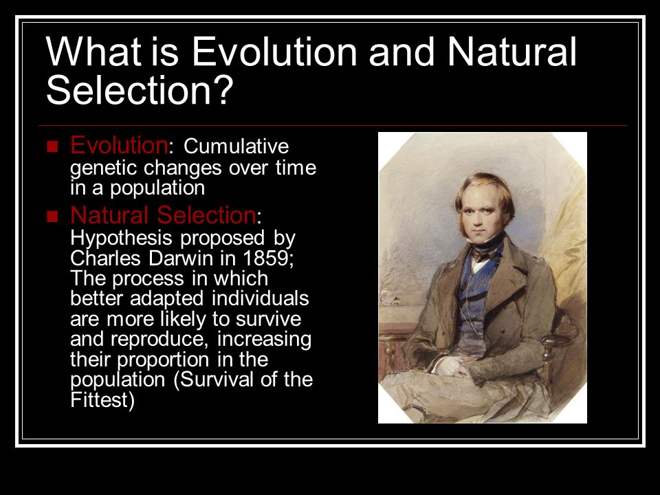 What is Evolution and Natural Selection